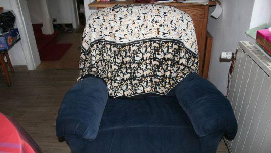 fauteuil Jean-claude 002