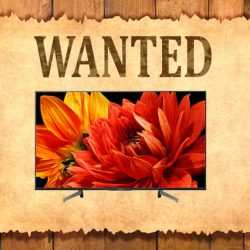 wanted: tv